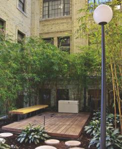 bamboo-dan-245x299