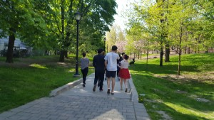 Group of people walking down pathway in park on sunny day