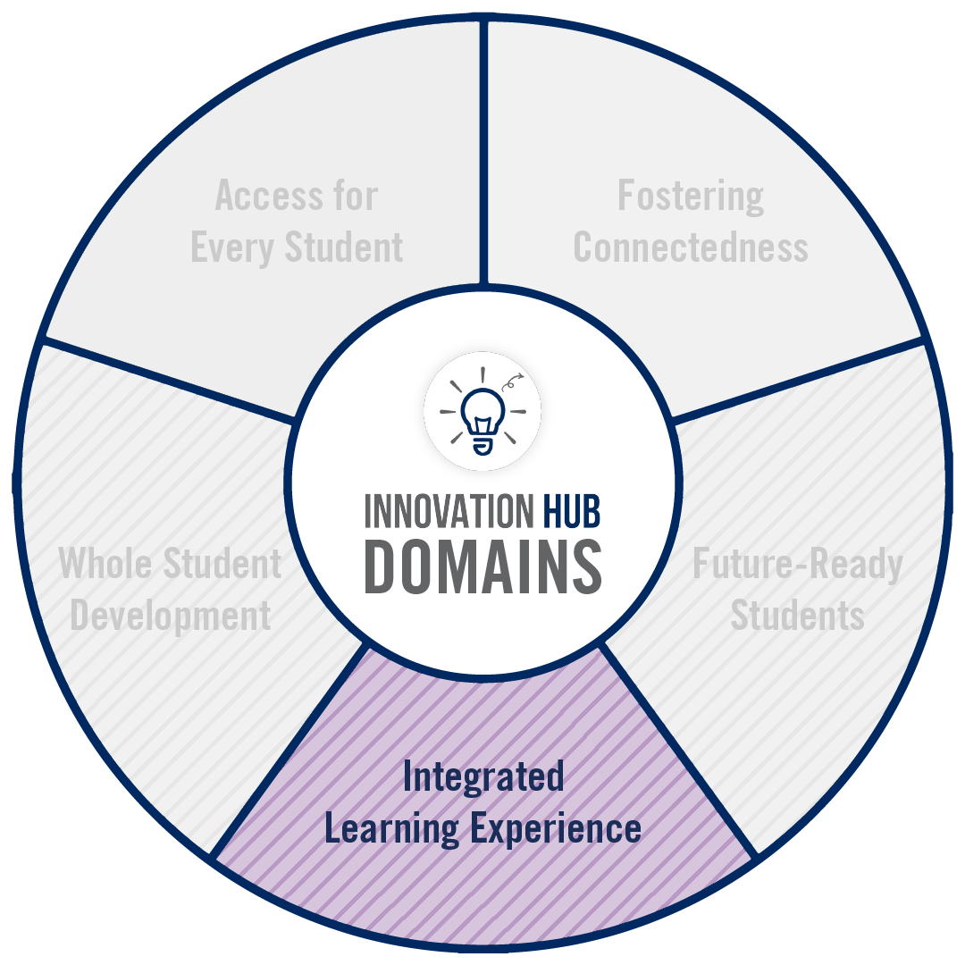 Circular graphic that highlights which domains of innovation are associated to the project.