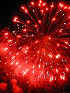 "© 2006 ""fireworks"" by Angela Sevin"