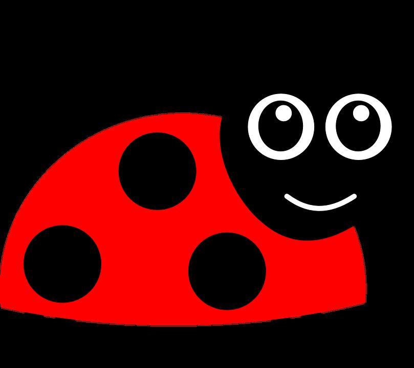animated ladybug