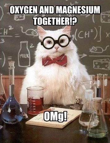 Chem cat courtesy of http://chzmemebase.com