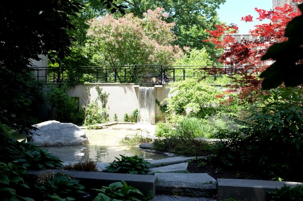 I have named this the Vic Oasis, I don't know if it has a real name but I feel like Oasis is fitting. This gem is nestled between Pratt Library and Lower Burwash under a giant tree. The only downside to this spot is the people sudying in Pratt will be staring at you the entire time you're there.