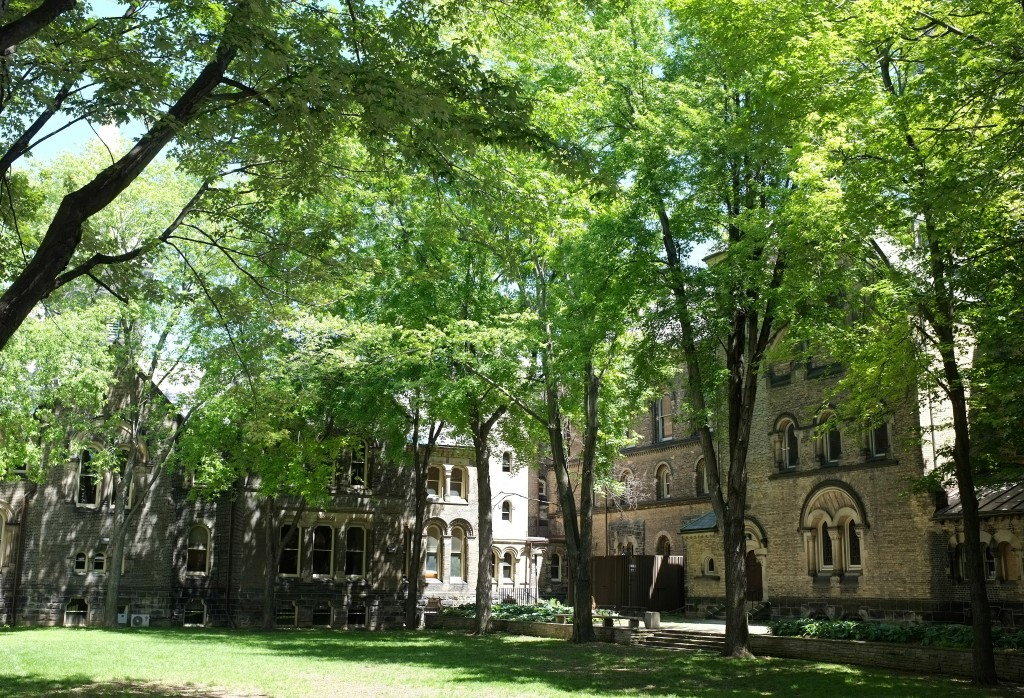 I like the University College Quad in that it's very different from those of Trin and Hart House, it's wilder and has a lot more shade.