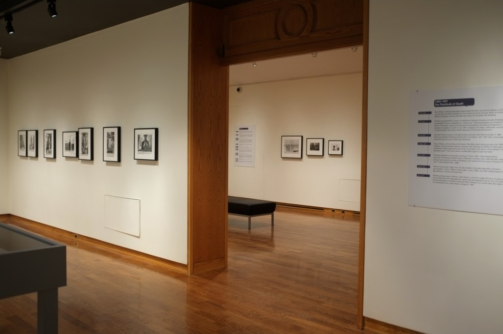 wide shot of the ginsberg exhibit