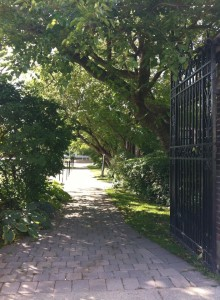 looking through an open iron gate, down a shaded cobblestone path with grand overhanging trees and bushes, towards the bright sunlight beyond