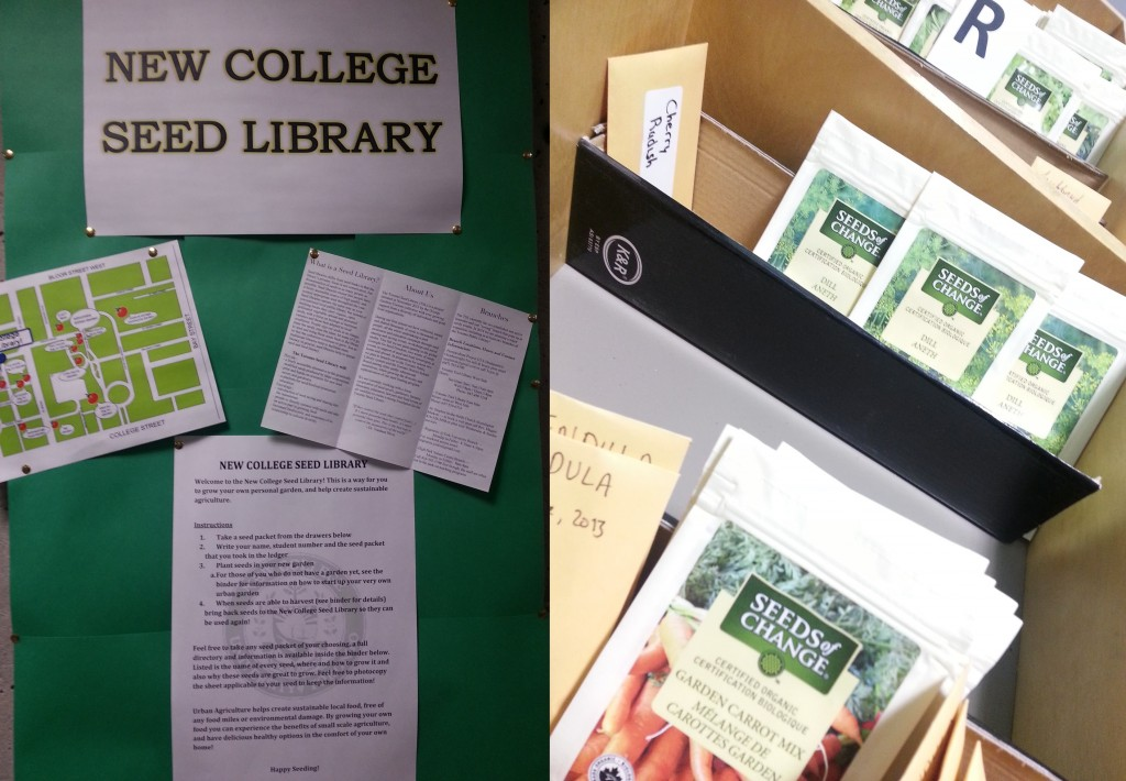 Photo of the Seed Library at New College, showing packets of seeds.