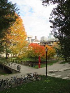 From a small rise, this shot looks out over the paths, bridge, and amphitheatre of Philosopher's Walk with the orange and yellow leaves of Fall now on the trees
