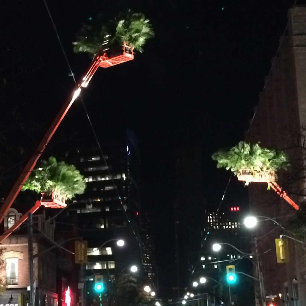 Cranes with plants with growing out of them in the skies of Queen St.