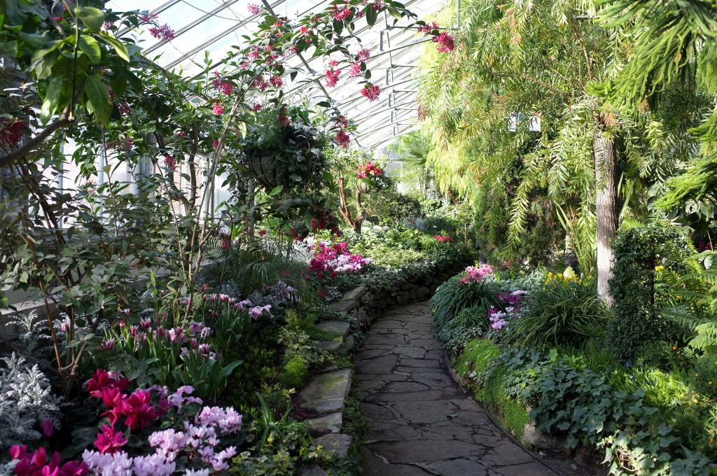 a curving path is in the middle of the picture. on the left side of the path are green plants, pink and red flowers, and a climbing plant that hangs over the path and has red flowers. On the right side are green trees.