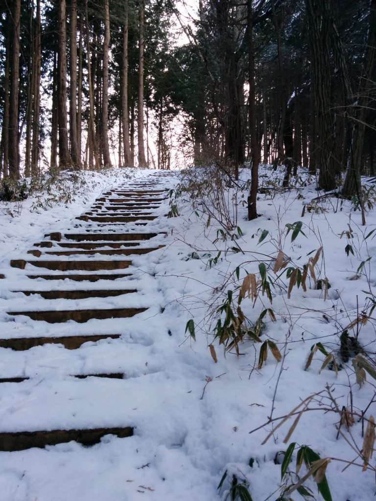 This image shows snow-covered steps surrounded by trees. It is part of the path leading to the top of Mt. Jinba.