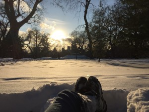 My perspective, lying in the snow in Queen's Park, looking towards the university buildings through the trees with a low afternoon sun in the background