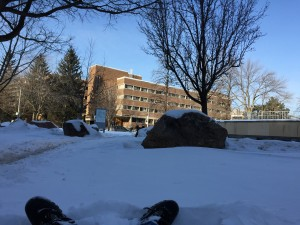 My perspective lying in the snow in the shade, next to Sidney Smith Hall looking towards the New College Buildings to the west lit by morning sunlight
