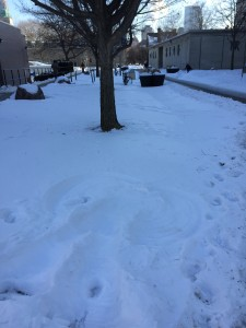 My shaded snow angel next to Sidney Smith, looking towards Saint George Street