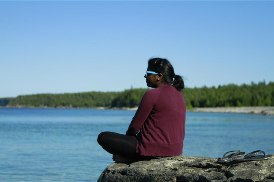 Api sitting on rock formation overlooking a lake at Georgian Bay