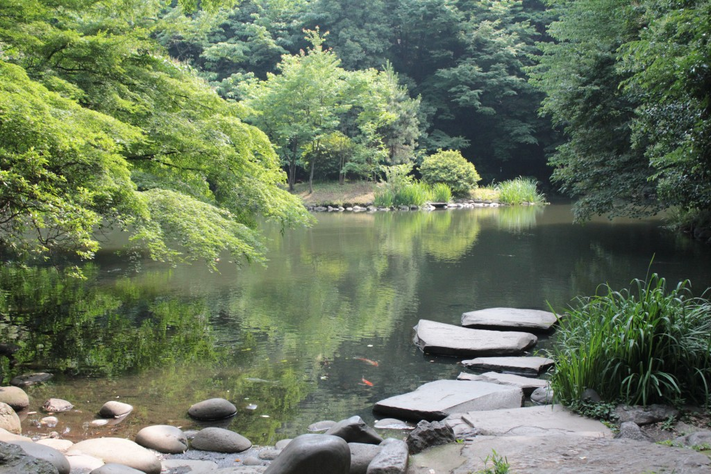 This image shows a pond surrounded by a stone path and trees.