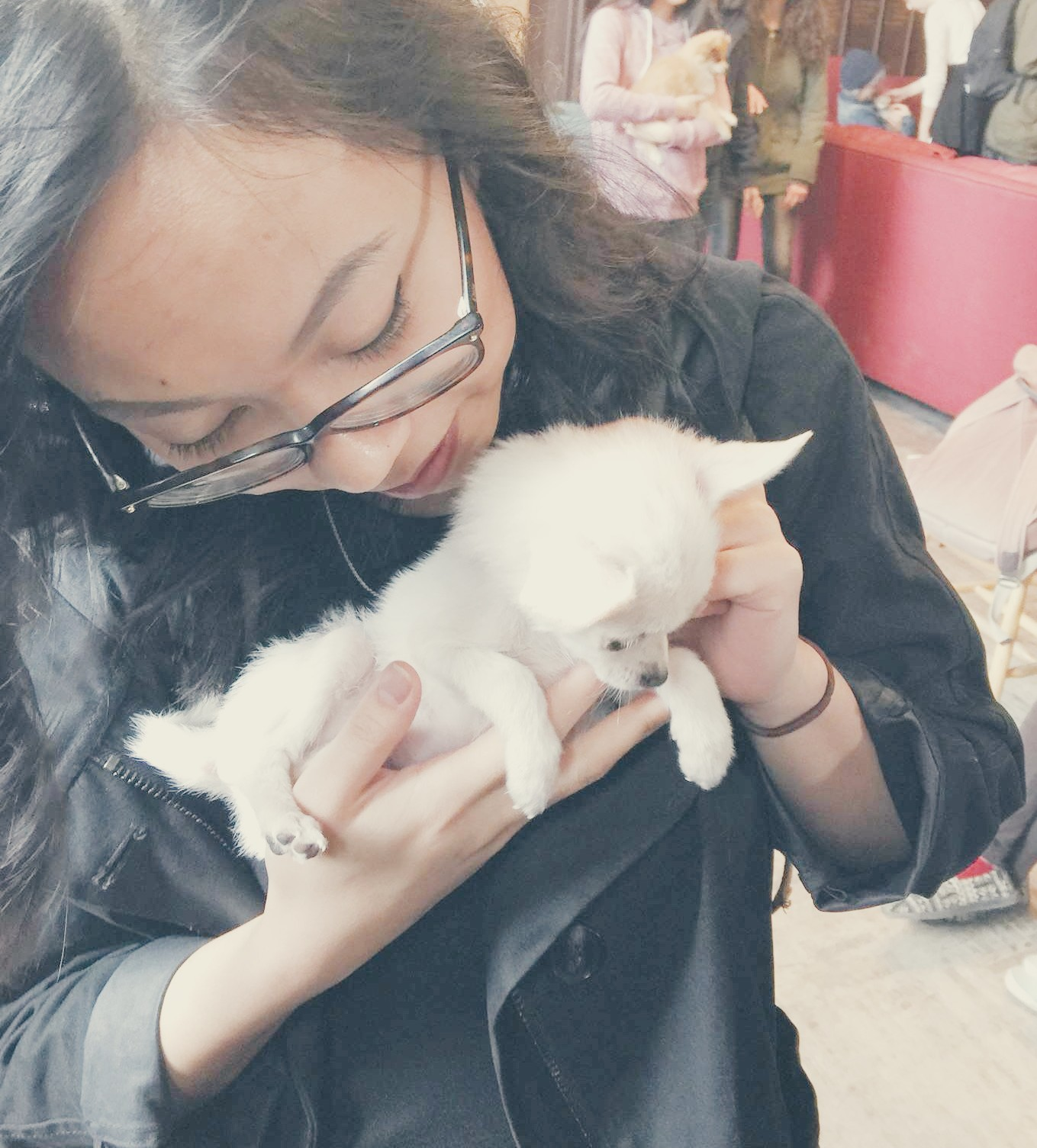 Me holding a fluffy little pup during the UC Exam Jam in the JCR.