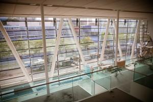 Goldring Centre for High Performance Sport
