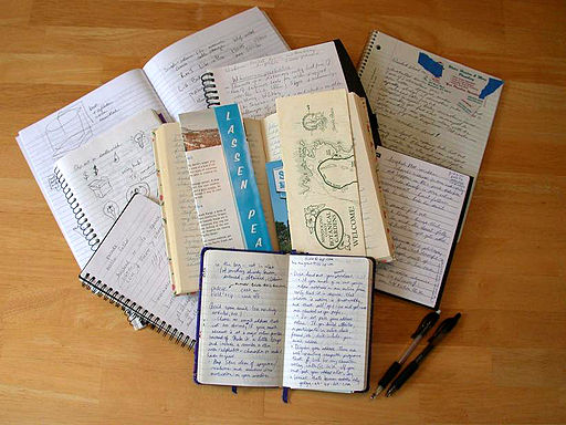 A picture of open notebooks and journals with various notes written in them.
