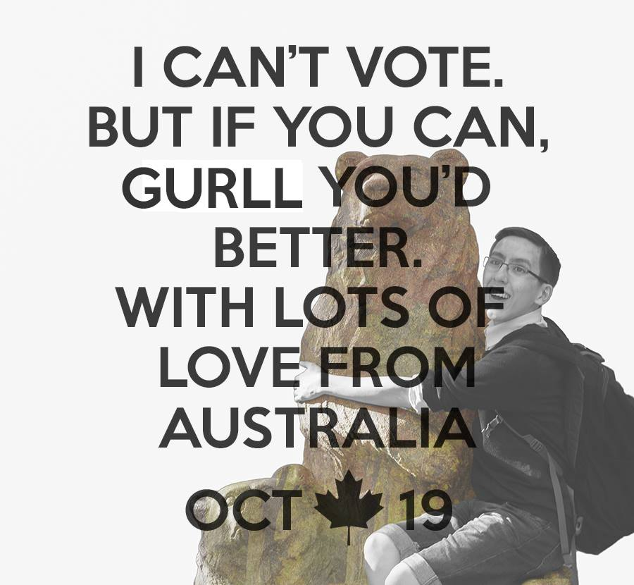 "Steven holding a photoshopped bear with ""I can't vote but i you can, guurl you'd better. With lots of love from Australia. Oct. 19th."""