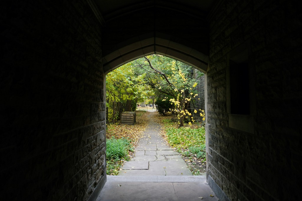 photo of the path between hart house and queen's park