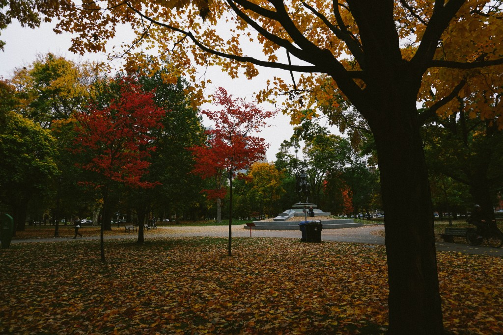 photo of the centre of queen's park surrounded by leaves