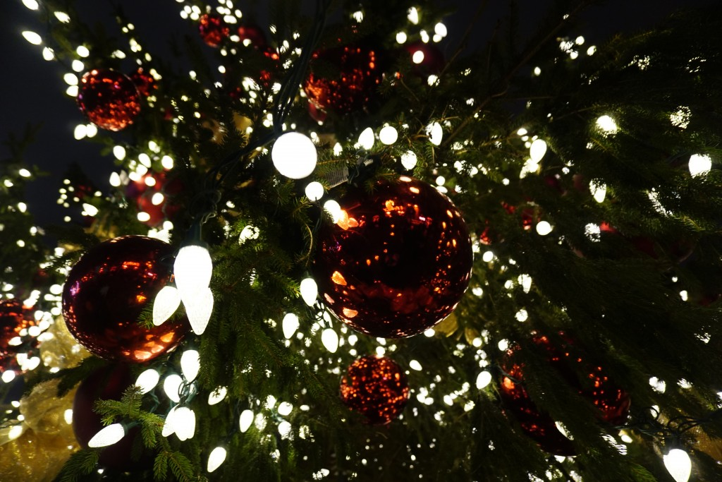 close up photo of lights on a giant christmas tree