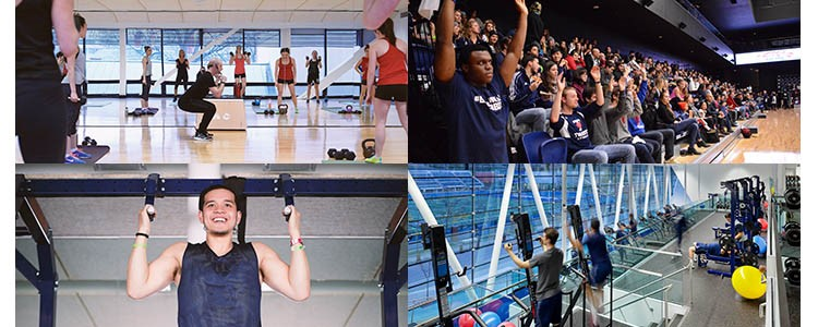 Photos from the Goldring Centre for High Performance Sport, our newest athletic facility!  Source: physical.utoronto.ca