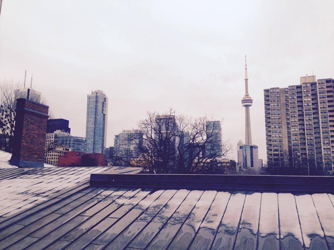 A photo of the the CN Tower from afar.
