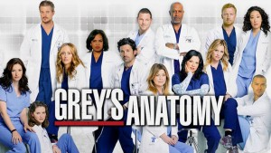 Don't be fooled! Shows like Grey's Anatomy neglect to show all the interprofessional collaboration in healthcare! (Source: http://www.breathecast.com/articles/grey-s-anatomy-season-11-episode-24-spoilers-amelia-confronts-meredith-in-time-stops-video-27438/)