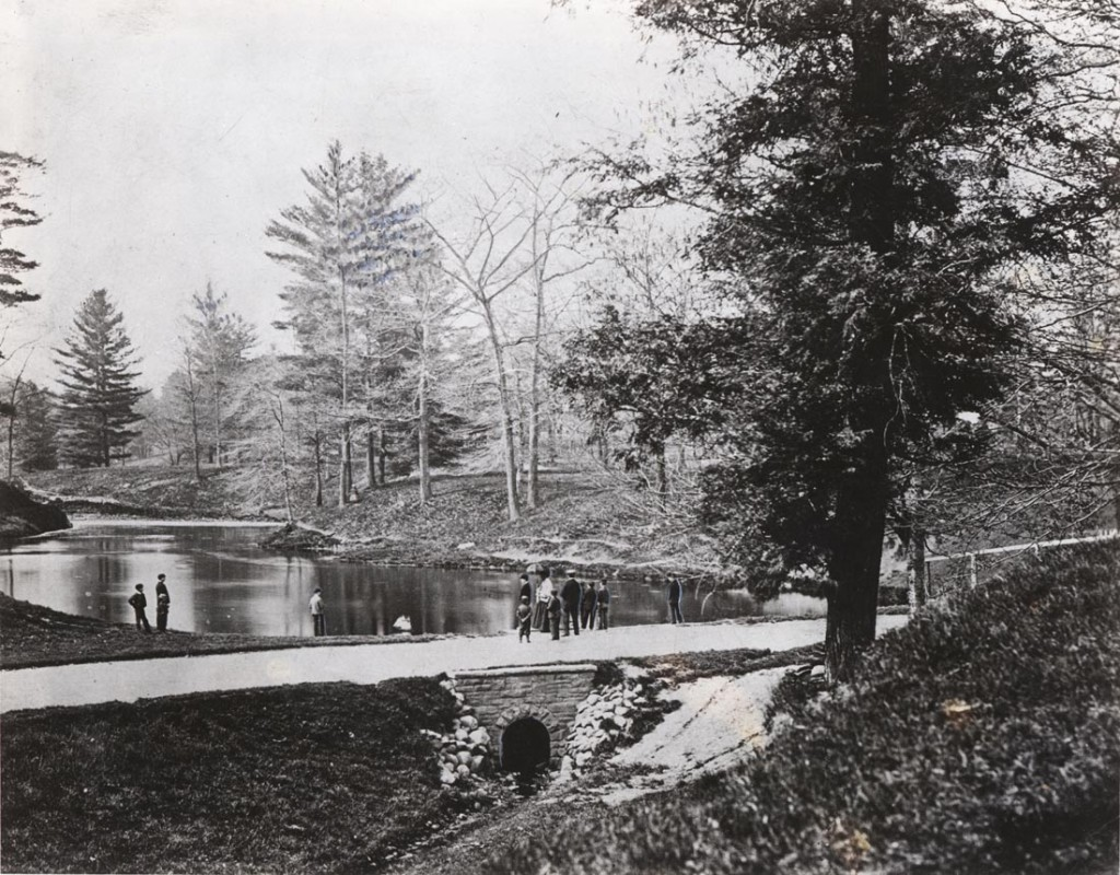McCaul's Pond, late 1870s source: http://heritage.utoronto.ca/chronology
