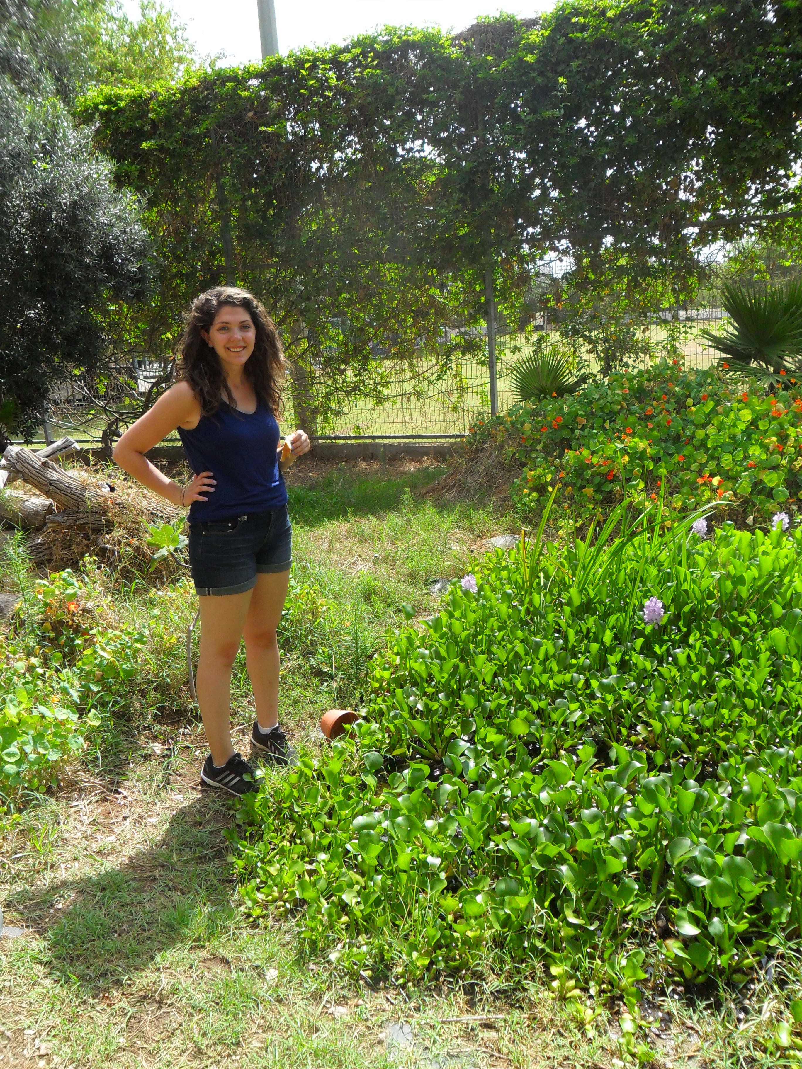 A picture of me standing in an urban farm surrounded by bright green bushes with flowers in them.