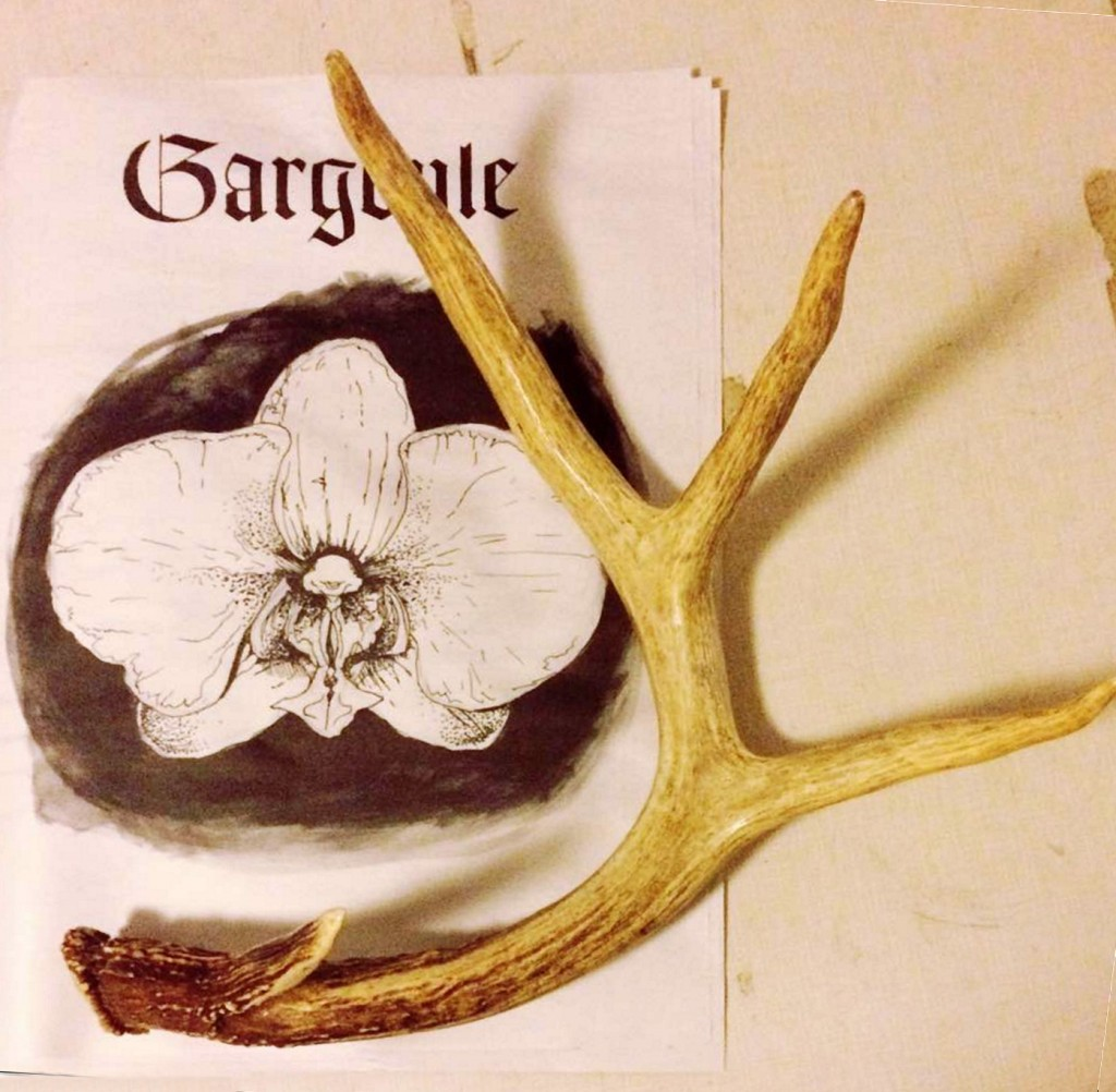 Newspaper with antler on top of it