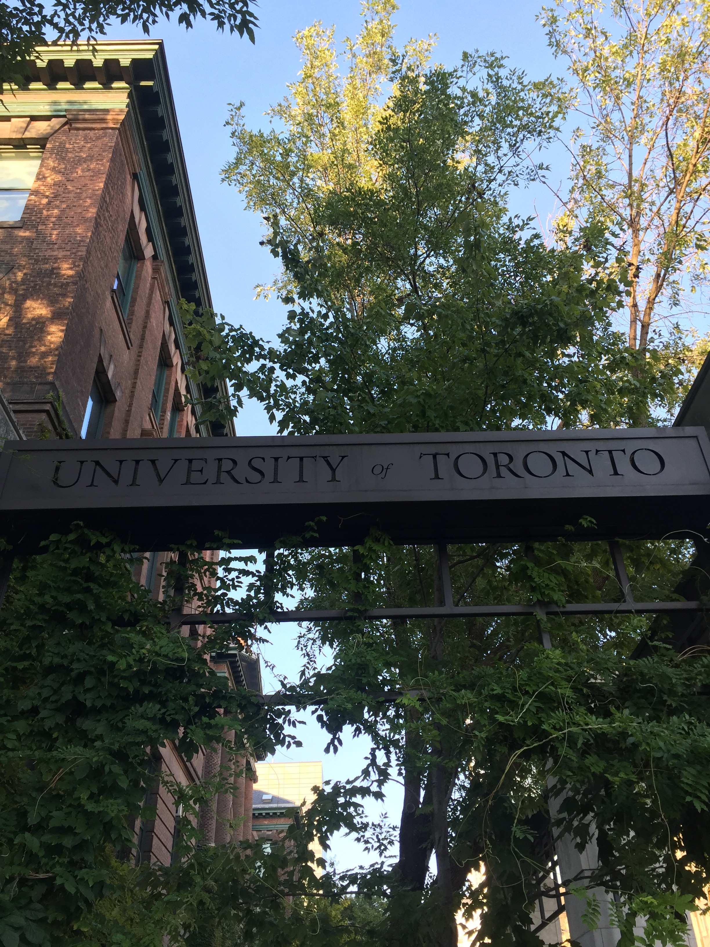 A photo a bar with an etching that reads University of Toronto in front of a red brick building and a tree