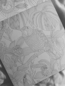 A sketch of an intricate jungle scene: there's a parrot, surrounded by textured, detailed vegetation, meant to be coloured in