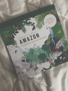 A picture of the cover of a colouring book with designs of the Amazon Jungle. There are partially coloured insects, birds, and vegetation