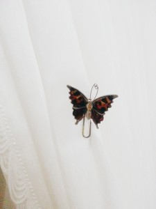 A picture of a butterfly pin in front of a white backdrop