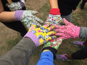 a photo of a bunch of hands donning different, multi-coloured gardening gloves