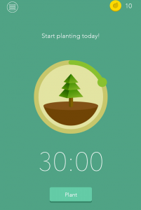 A picture of the app, Forest: there's a timer set to thirty minutes and a count down of thirty minutes happening around a picture of a pine tree