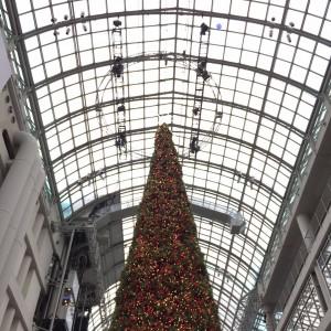 """ALT=""""A Christmas tree"""""""