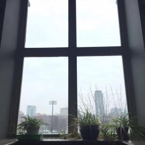 "ALT=""A photo of a cloudy, rainyday view outside a window pane"""