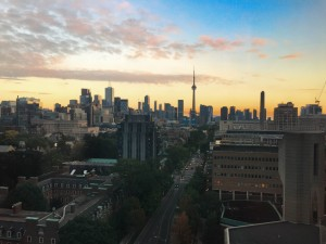 View from Robarts