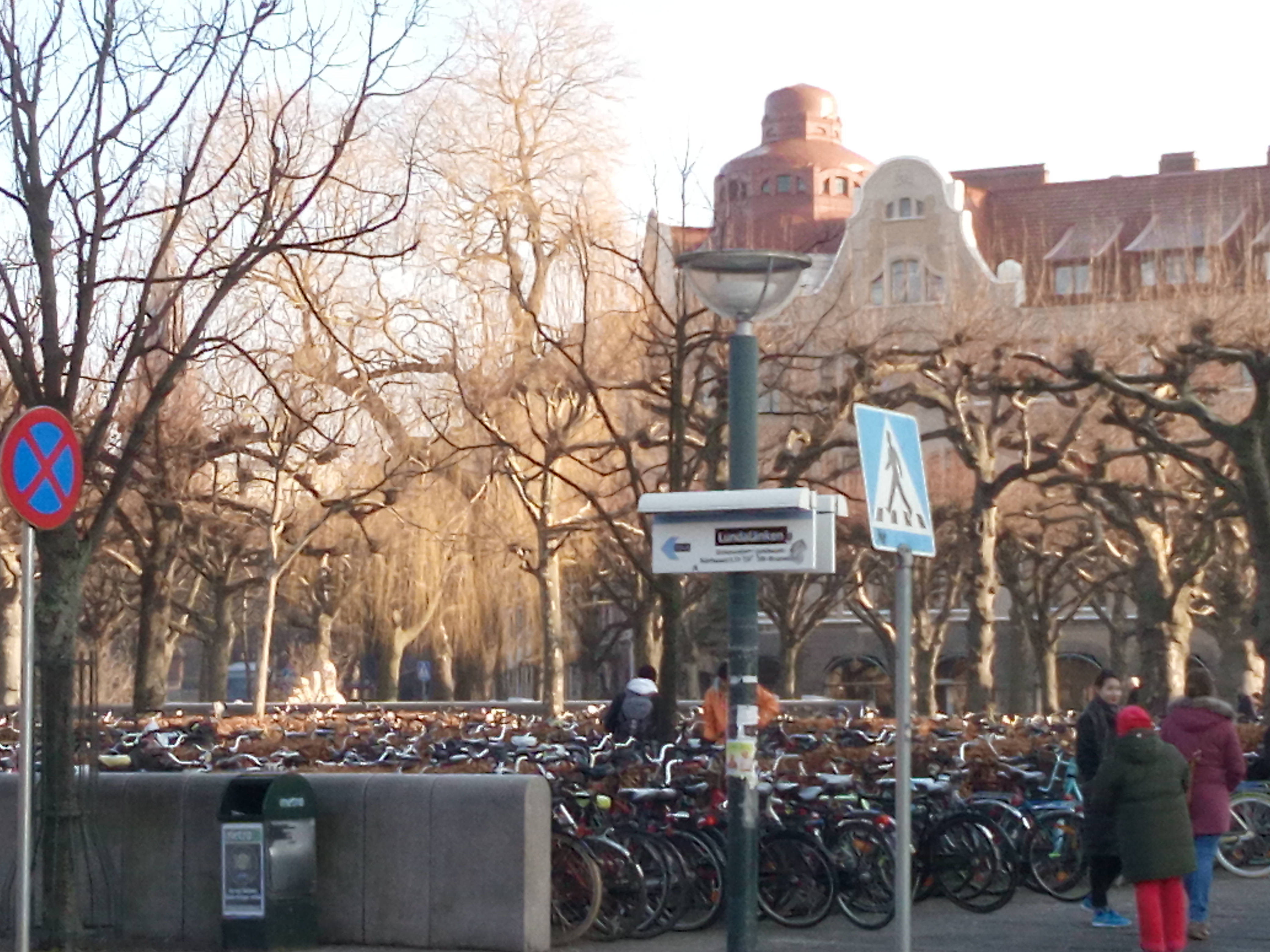 Downtown Lund is centered around a large square half of which is a public market and the other half is all bike parking!