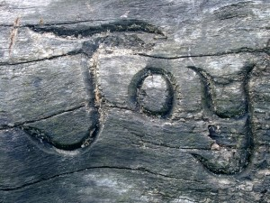 a photo of the word Joy carved into a wooden log