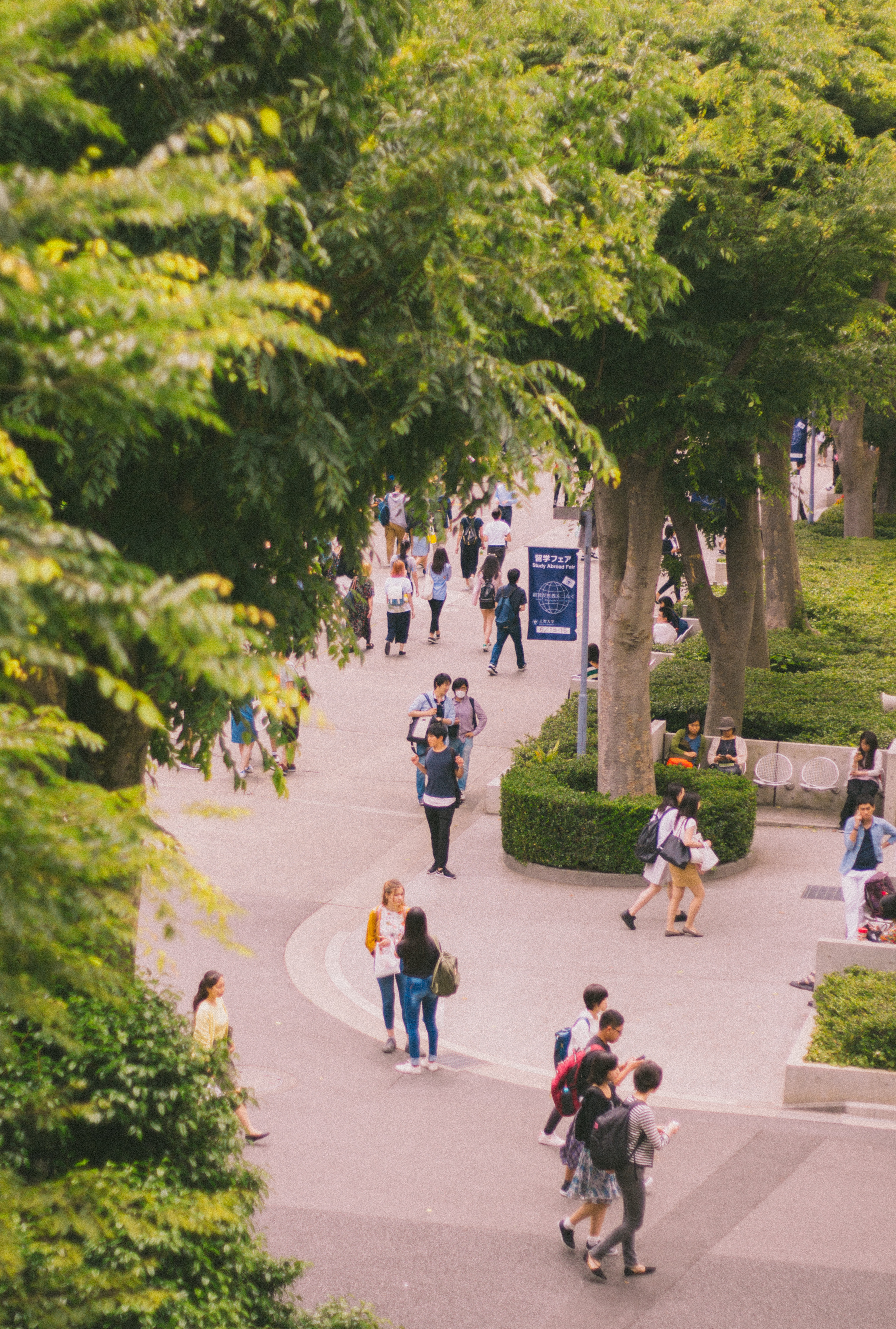 A bird's eye view of the centre of Sophia's campus, which is much smaller than U of T!