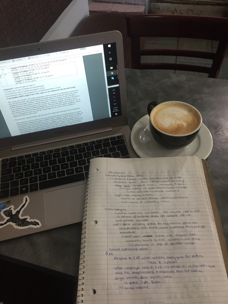 A picture of my coffee and study notes at a cafe.