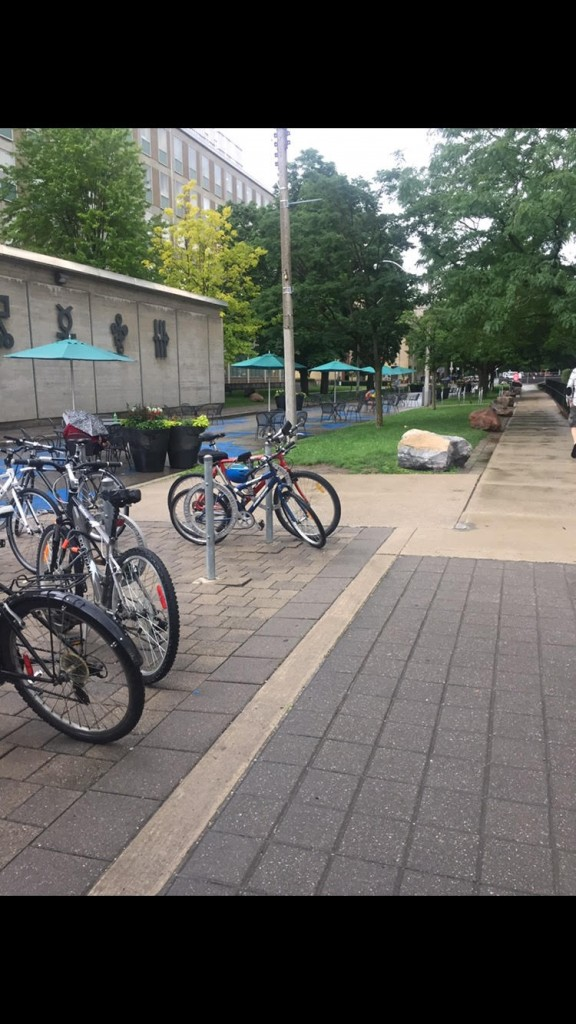 A picture outside Lash Miller with Bicycles.