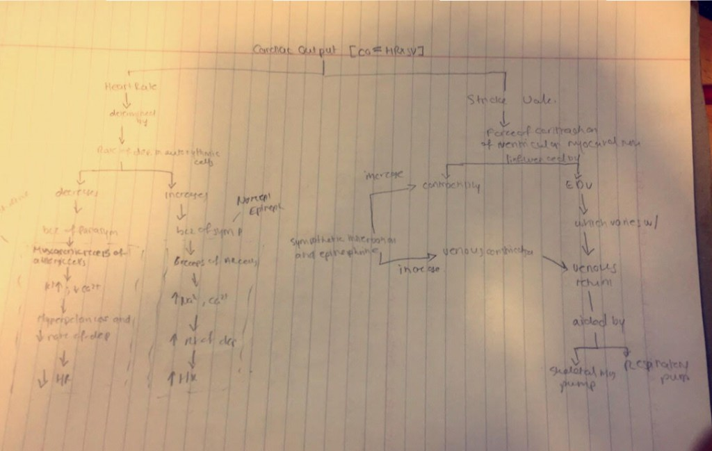 A picture of a mind map .