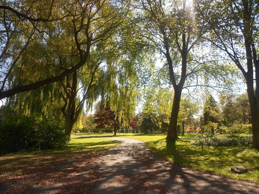 A picture of a park at Toronto Center Island