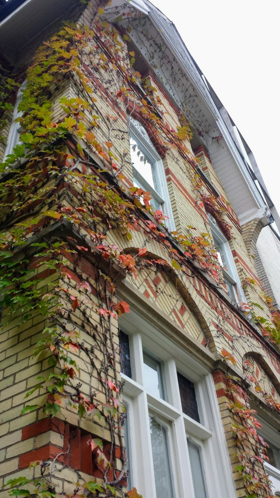 An upward tilted photo of an older building, lined with leaves